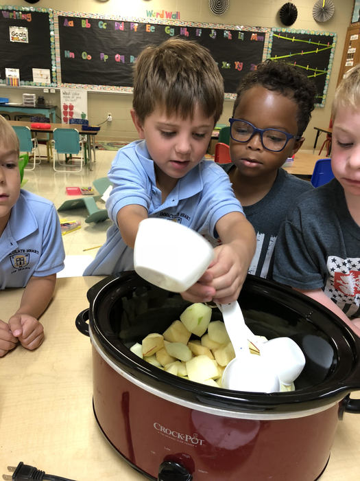 Kindergarten loved learning about apples last week!