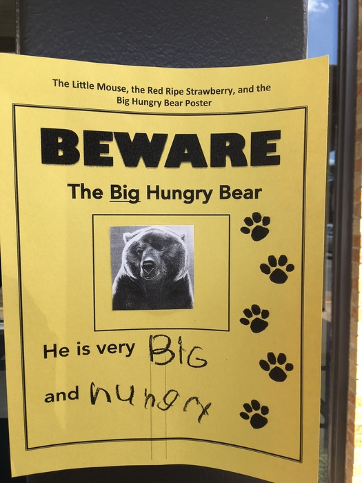 Pre-K 3 are looking for this bear