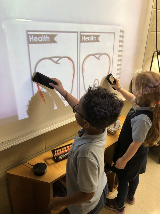 Kindergarten enjoyed learning about dental health this week!