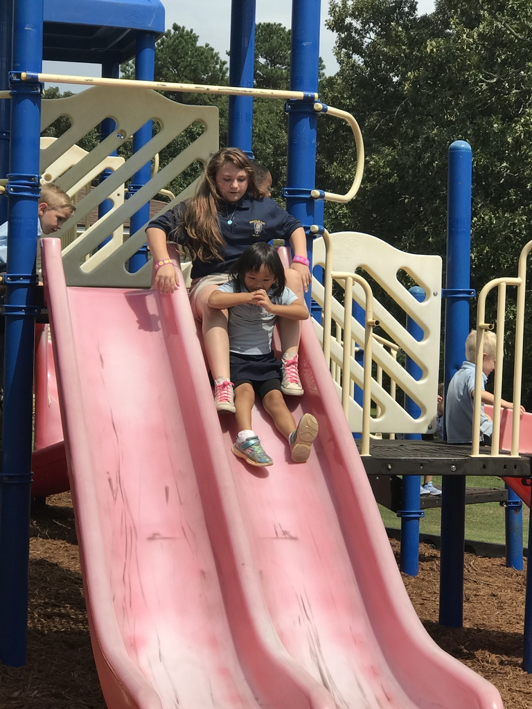 Lexi and Clara on the slide!