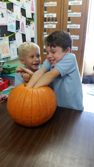Kindergarten enjoyed carving pumpkins and exploring the pulp!