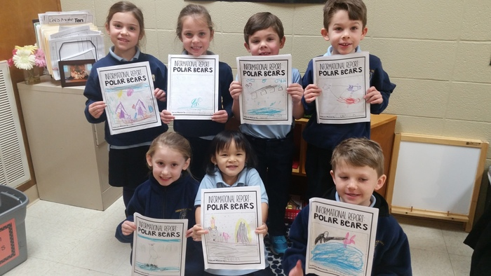 Kindergarten published our first informational text about polar bears.
